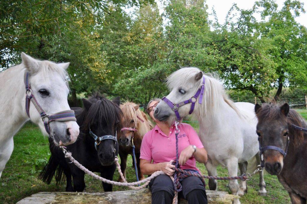 Pony Tales Club, Amanda & her ponies
