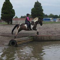 Pony Tales Club Amanda Minty cross country water